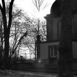 Friedhof Lindener Berg (20)