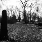 Friedhof Lindener Berg (8)