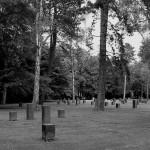 Friedhof Seelhorst 007