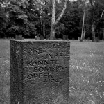 Friedhof Seelhorst 009