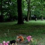 Friedhof Seelhorst 029