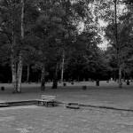 Friedhof Seelhorst 037