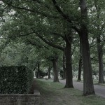 Friedhof Seelhorst 091