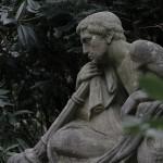 Friedhof Stöcken (38)
