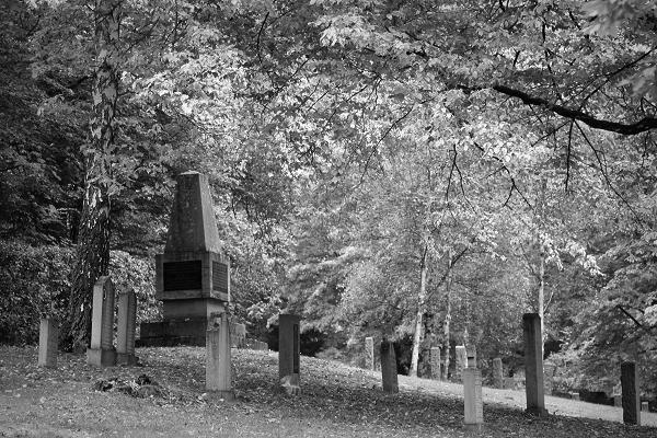 Friedhof Wehl (19)
