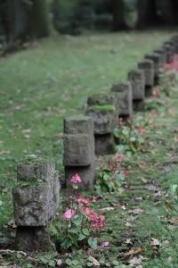 Friedhof Wehl (35)