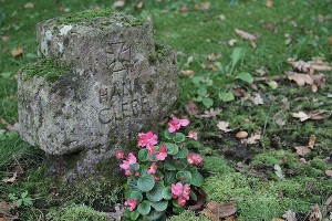 Friedhof Wehl (40)