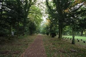 Friedhof Wehl (55)