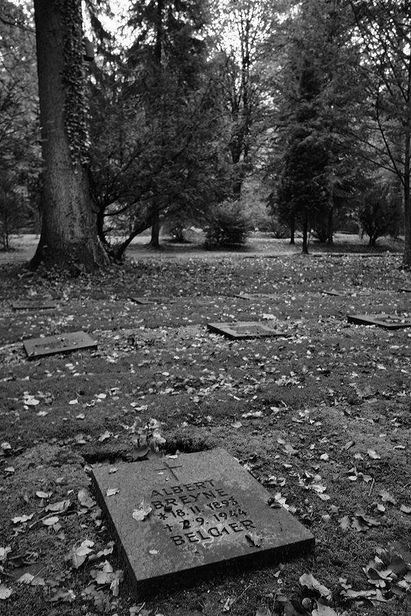 Friedhof Wehl (84)