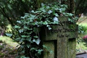 Friedhof Wehl (91)