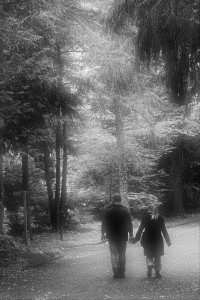 Friedhof Wehl (92)