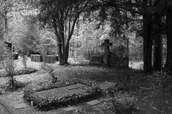 Friedhof Wehl (94)