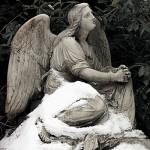 Friedhof_011