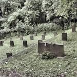 Friedhof_KZ-Transport