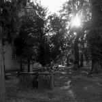 Friedhof_Schulenburg_01