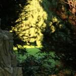 Friedhof_Zuerich_Sihlfeld (12)