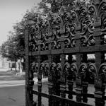 Friedhof_Zuerich_Sihlfeld (13)