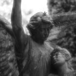 Friedhof_Zuerich_Sihlfeld