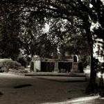 Friedhof_Zuerich_Sihlfeld (21)