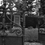 Friedhof_Zuerich_Sihlfeld (25)