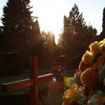 Friedhof_Zuerich_Sihlfeld (29)