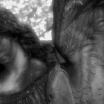 Friedhof_Zuerich_Sihlfeld (6)