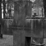 Gartenfriedhof (15)