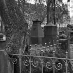 Gartenfriedhof (19)