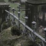 Gartenfriedhof (3)