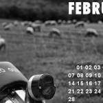 Guzzikalender_Februar_2011