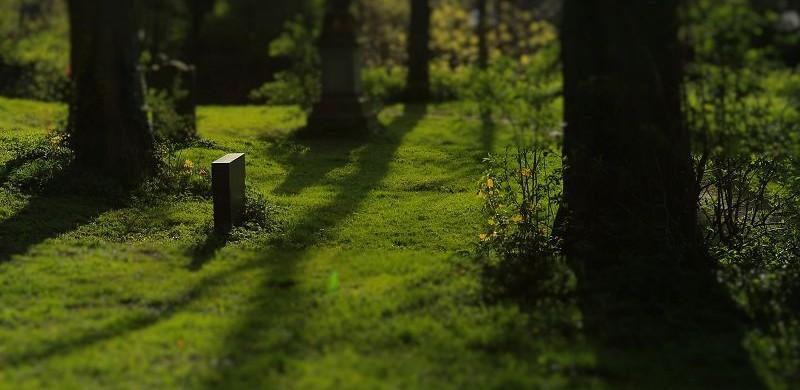 Hildesheim Johannisfriedhof (110)