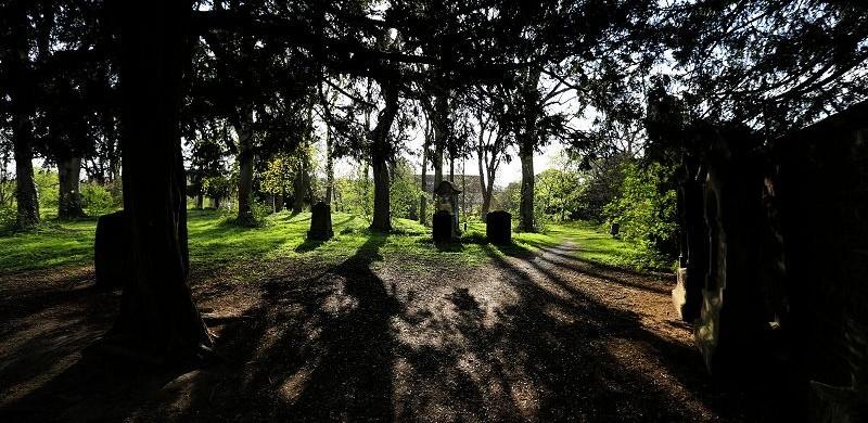 Hildesheim Johannisfriedhof (3)