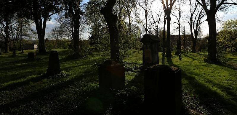 Hildesheim Johannisfriedhof (5)