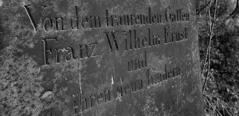 Hildesheim Johannisfriedhof (57)