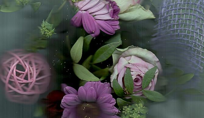 Scanografie: Blumen