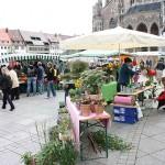 Ulm (5)